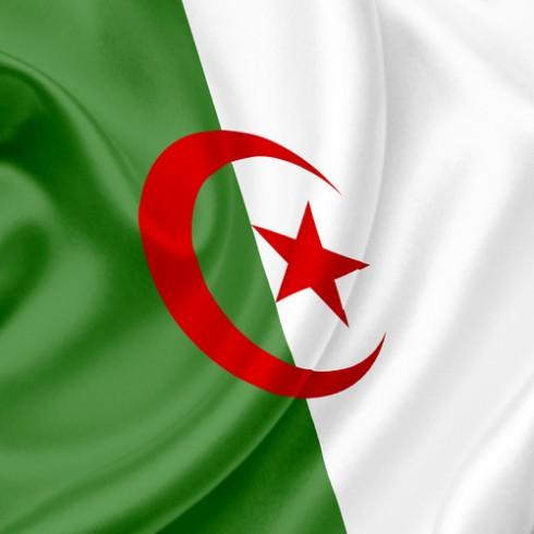 """الجزائر تدخل عصر الطاقة المتجددة بمشروع  """"تافوك 1"""" بتكلفة 3.6  مليار دولار"""