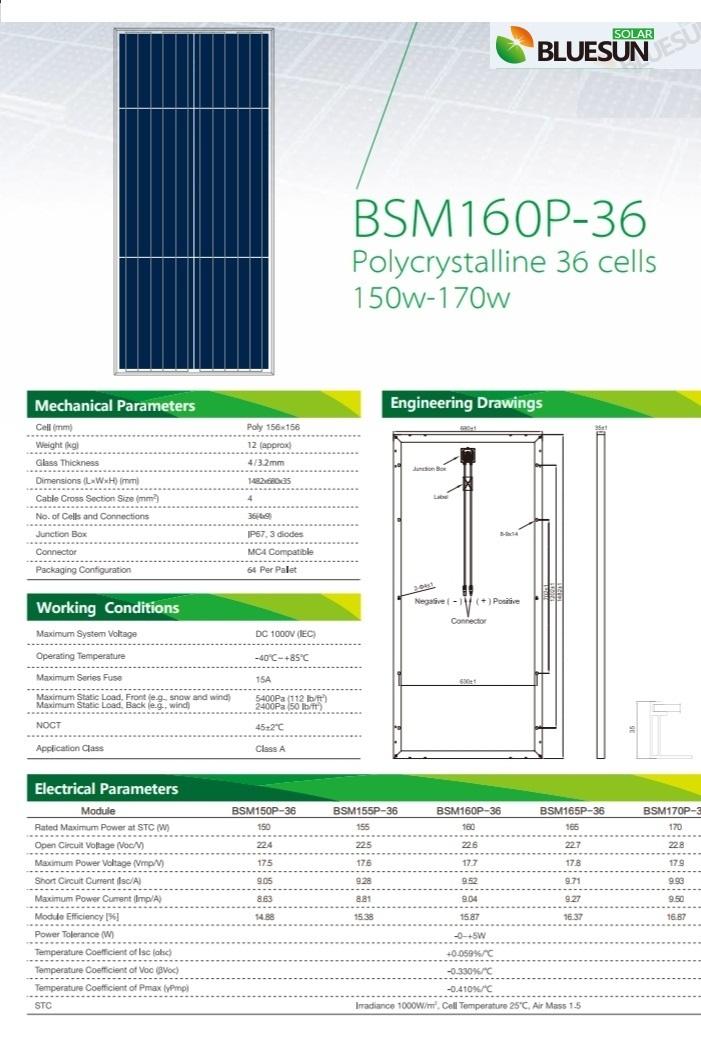 Bluesun BSM160p-36
