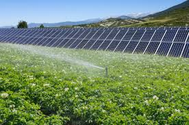 محافظة الوادى الجديد تتجه الى الطاقة الشمسية