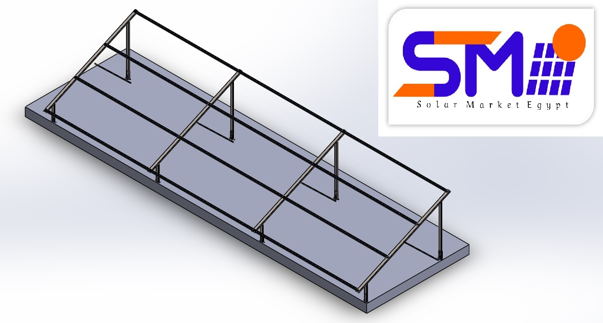 SME MS2-60 cells