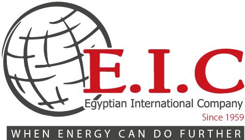 المؤسسه المصريه الدوليه